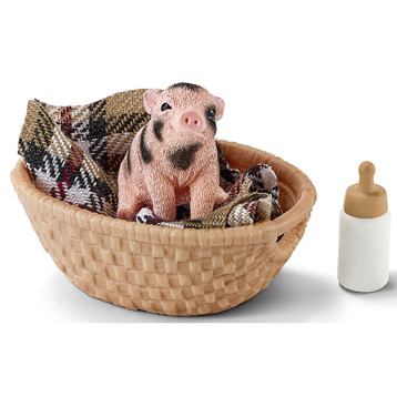 Mini-Pig with Bottle