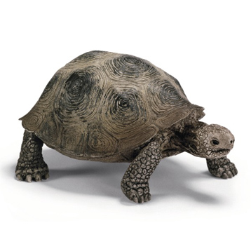 Wild Life Giant Turtle Figure